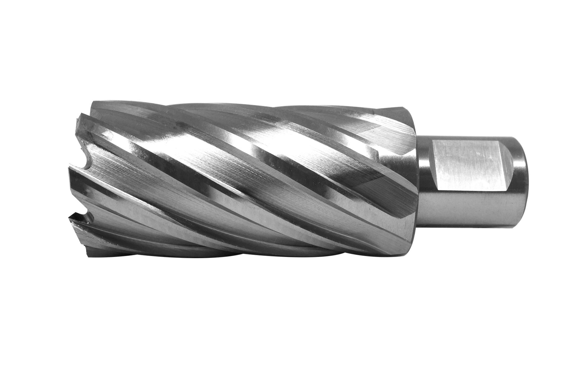 PAULIMOT Schlangenbohrer /Ø 35 mm Form Lewis L/änge 460 mm